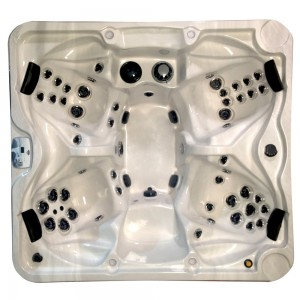 Arctic Spas Glacier XL - Legend